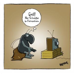 Fliege_TV Kopie